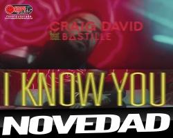 """""""I Know You"""" es la colaboración entre Craig David y Bastille"""